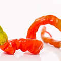 Twisted Pepper by Jt PhotoDesign