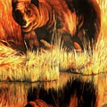 Two Bears by DC Houle
