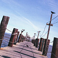 Two Birds On A Pier by Ana V Ramirez
