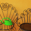 Two Black Iron Chairs And A Green Watering-can  Laid  On The Big by Susanna Mattioda