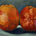 Two Blood Oranges by Sarah Lynch