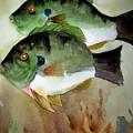Two Bluegills by Audrey Bunchkowski
