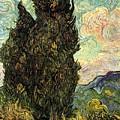 Two Cypresses by Van Gogh