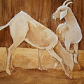 Two Goats In Sepia by Georgia Annwell