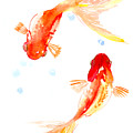 Two Goldfish Feng Shui by Suren Nersisyan