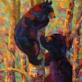 Two High - Black Bear Cubs by Marion Rose