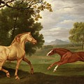 Two Horses In A Landscape by Charles Towne