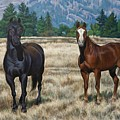 Two Horses by Marlyn Munter
