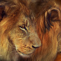 Two Lions by Carol Cavalaris