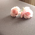 Two Little Pink Roses by Usha Shantharam