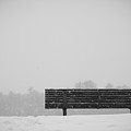Two Lovers Sat On A Park Bench by Nathan Larson