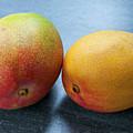 Two Mangos by Elena Elisseeva