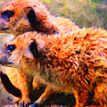 Two Meerkats . Photoart by Wingsdomain Art and Photography