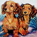 Two Peas In A Pod - Dachshund by Lyn Cook