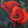 Two Poppies  by Torrie Smiley