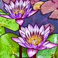 Two Purple Lotus Flower by Jeelan Clark