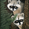 Two Raccoons by Angie Cockle
