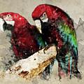 Two Red Ara Parrots On The Branch by Jaroslaw Blaminsky