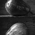 Two Ripe Pears In Black And White by Edward Fielding