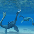 Two Sea Dragons by Corey Ford