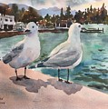 Two Seagulls By The Sea by Ken Bao--Fine Art Spring