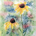 Two Sunflowers by Debbie Lewis