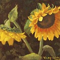 Two Sunflowers by Vicky Gooch