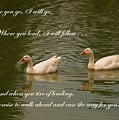 Two Swans - Marriage Vows by Yali Shi