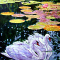 Two Swans In The Lilies by John Lautermilch