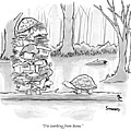 Two Tortoises Speak. One Has A Large Number by Benjamin Schwartz