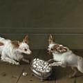 Two Toy Spaniels At A Sugar Bowl by Johann Friedrich von Grooth