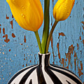 Two Yellow Tulips by Garry Gay