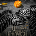 Two Zebras And Macaw by Maria Astedt