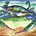 Tybee Blue Crab by Doris Blessington