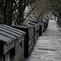 Typical Book Stands Along Seine, Autumn by Maxime Ordureau