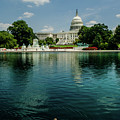 U S Capitol With A Duck by Allen Sheffield