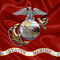 U. S.  Marine Corps - C O And Warrant Officer Eagle Globe And Anchor Over Corps Flag by Serge Averbukh