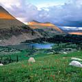 Uinta Wilderness by Leland D Howard