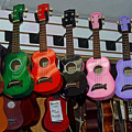 Ukeleles For Sale by Suzanne Gaff