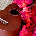 Ukulele And Red Flower Lei by Mary Deal