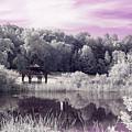 Ultraviolet Gazebo by Brian Hale