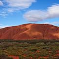 Uluru by Pamela Kelly Phillips