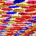 Umbrella Art by Colin Rayner
