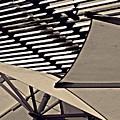 Umbrellas Sepia by Sarah Loft