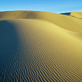 Umpqua High Dunes by Robert Potts