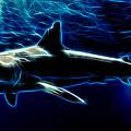 Under Blue Sea by Drazen Kirchmayer
