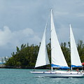 Under Full Sail by Barbara Ebeling