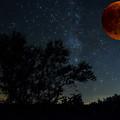Under The Blood Moon  by Saija Lehtonen
