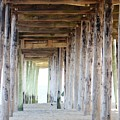 Under The Boardwalk Except It's The Pier by Judy Carr
