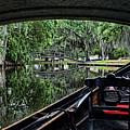 Under The Bridge by Judy Vincent